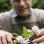 จัดดอกไม้...กิจกรรมเสริมความสุขสร้างอารมณ์ดีให้วัยซีเนียร์