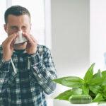 มีสมุนไพรอะไร รักษาโรคหวัดได้บ้าง